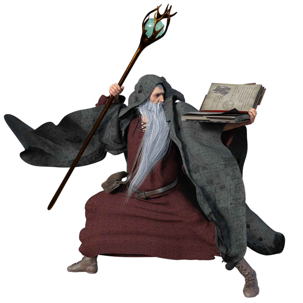 wizard with a staff and spell book