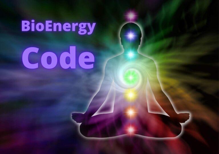 BioEnergy Code Review